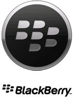 Blackberry Icon1
